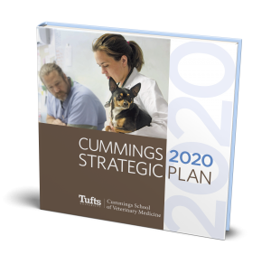 Cummings 2020 Strategic Plan