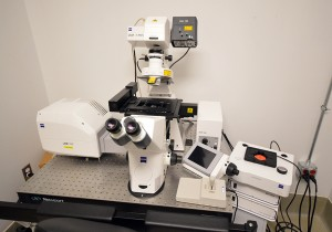 Zeiss LSM700 Confocal Microscope with Live Cell Imaging Capability