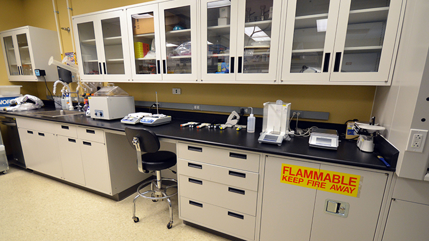 Lab bench in the RBL