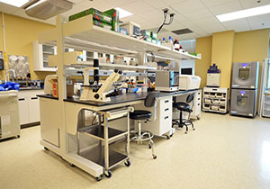 NE-RBL Lab