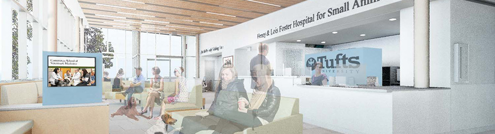 New waiting room rendering