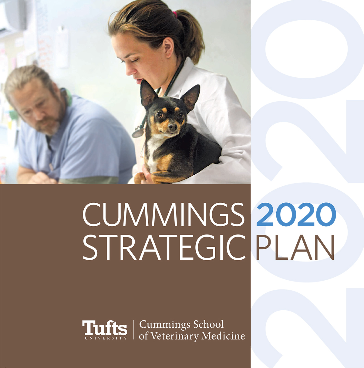 Cummings 2020 Strategic Plan Cover
