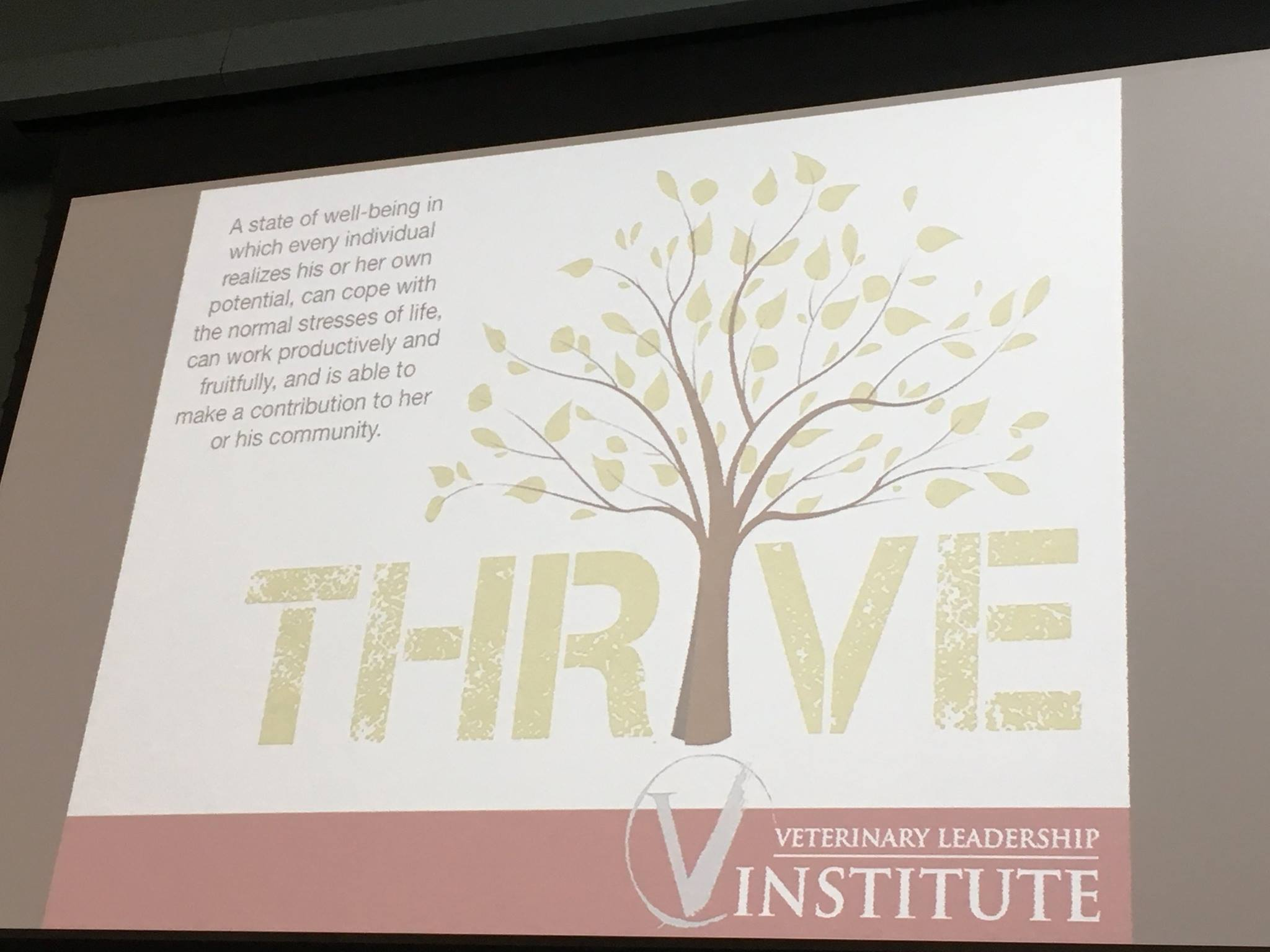1.3-cummings-thrive-image-4