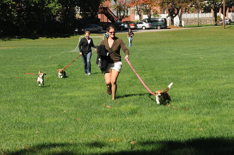 Farrier 10-8-10 Soccer Field Walking Dog
