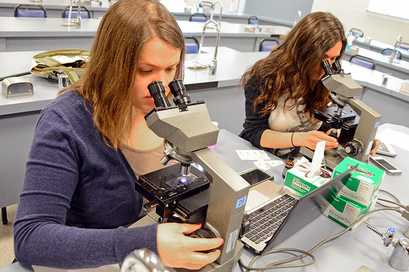 V14 students delve into Pathology during their Cytology Elective in the Alden Lab.